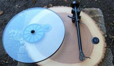 Gramofon ze Stumilowego Lasu