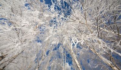 Rekord zimna w Polsce