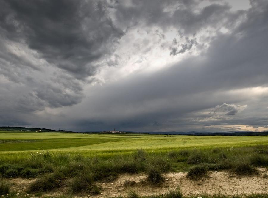 Ciężka zima zniszczyła pola