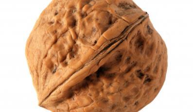 Orzechy włoskie są zdrowsze niż orzeszki ziemne, pekanowe, laskowe, brazylijskie