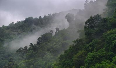 W Amazonii naukowcy odkryli nieznane plemię