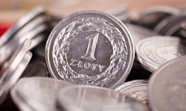 złoty złotówka moneta bilon