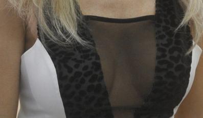 Biust Joanny Krupy