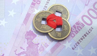 Zniszczą Polskę, byle mieć euro