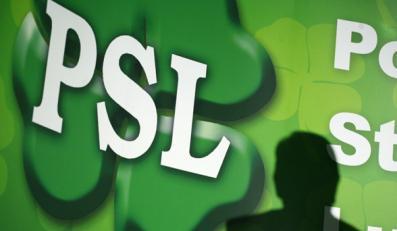 Działaczka PSL oszukiwała przy dotacjach?