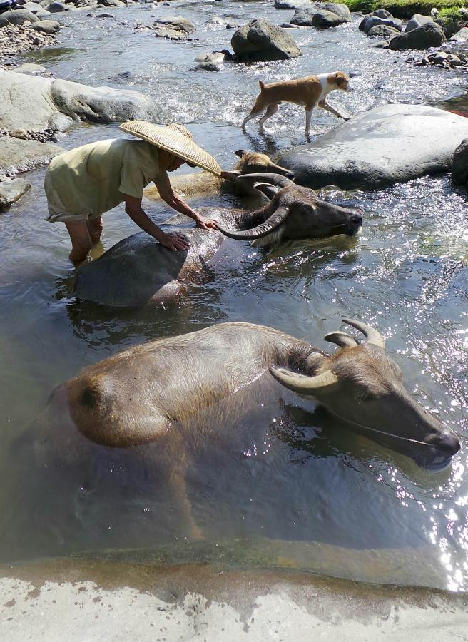 Ciomas, Jawa, Indonezja