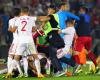 Skandal na meczu w Belgradzie. Zdalnie sterowany obiekt latający z flagą wywołał awanturę