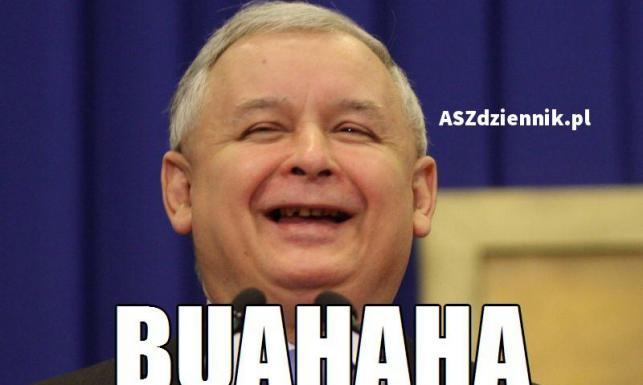 Tusk nie zazdrości Kopacz, a Macierewicz wychodzi z ukrycia. MEMY po wyborach