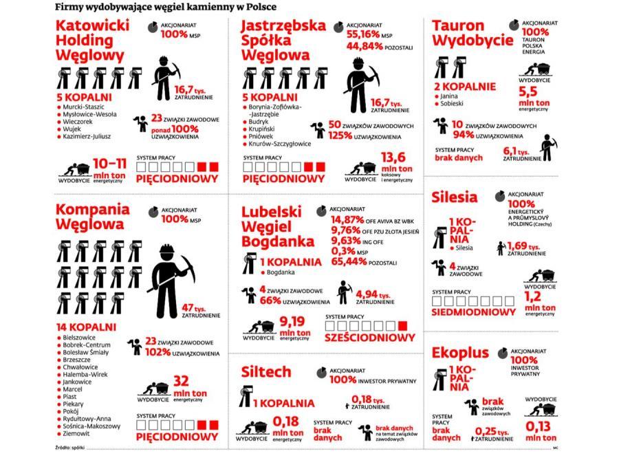 Firmy wydobywające węgiel kamienny w Polsce. INFOGRAFIKA