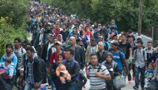 Imigranci w drodze z Wegier do Austrii
