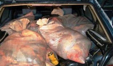 Ukradł prawie 700 kilogramów ryb