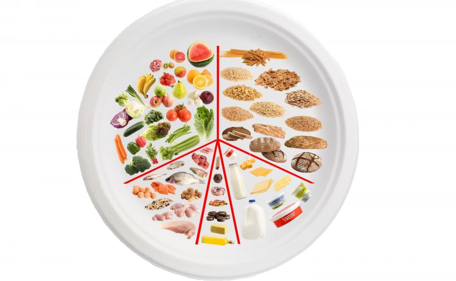 Talerz z różnymi produktami, jak piramida żywienia