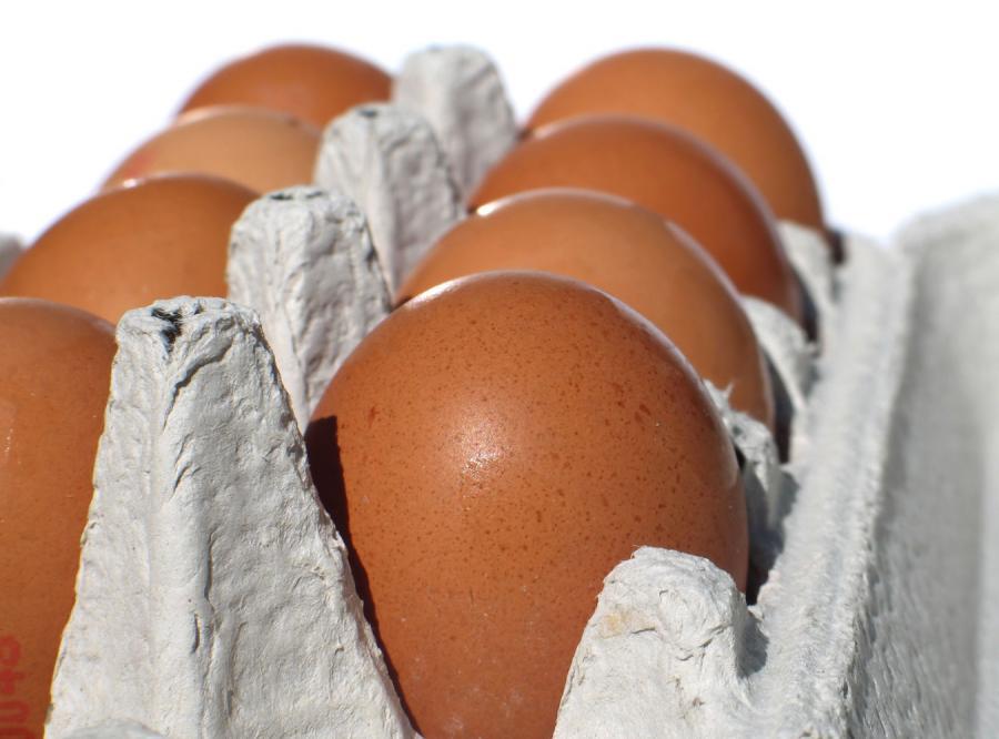 Nowa metoda kradzieży: Na jaja